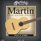 Martin Silk /Steel 12 String