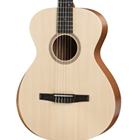Taylor A12-N Acoustic Guitars