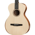 Taylor A12e-N Acoustic Guitars