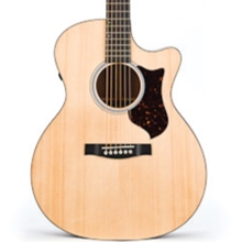 Martin Performing Artist GPCPA4 Acoustic Guitar